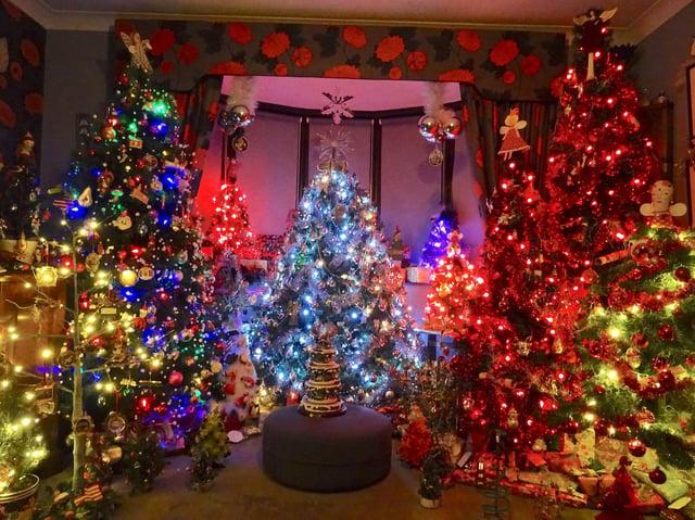 Geoff's Christmas trees