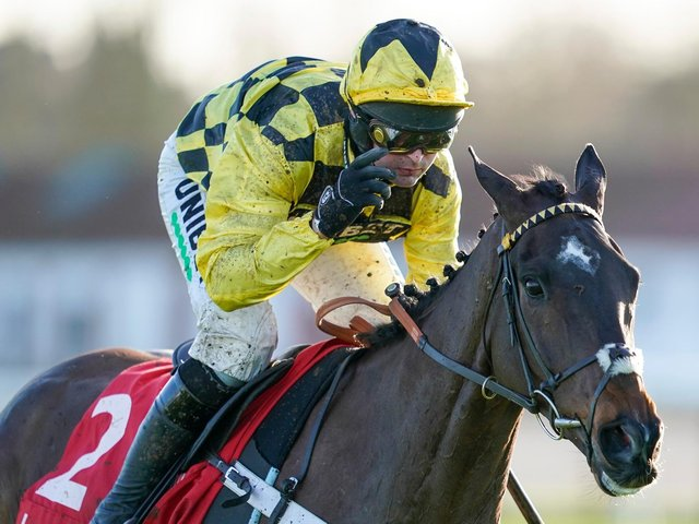 Shishkin is likely to be a well-backed favourite at the festival / Picture: Getty