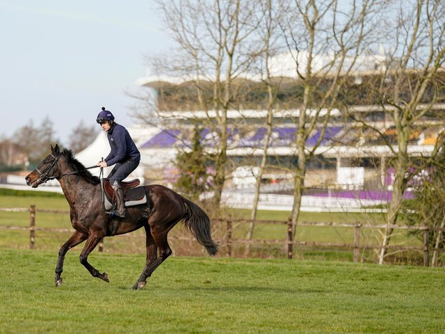 Ruby Walsh riding the Willie Mullins trained Koshari on the gallops at Cheltenham Racecourse