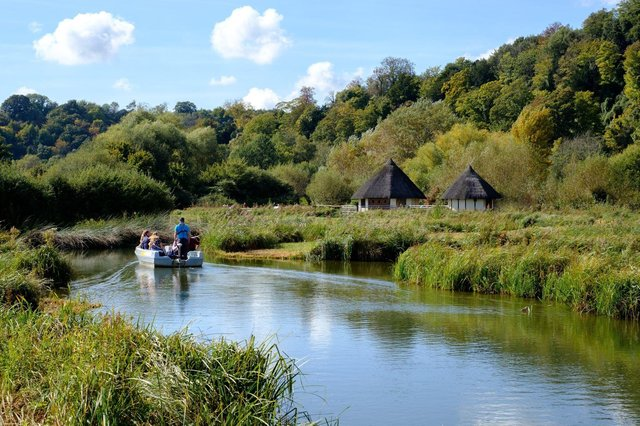 Arundel Wetland Centre is a perfect place to visit with all the family