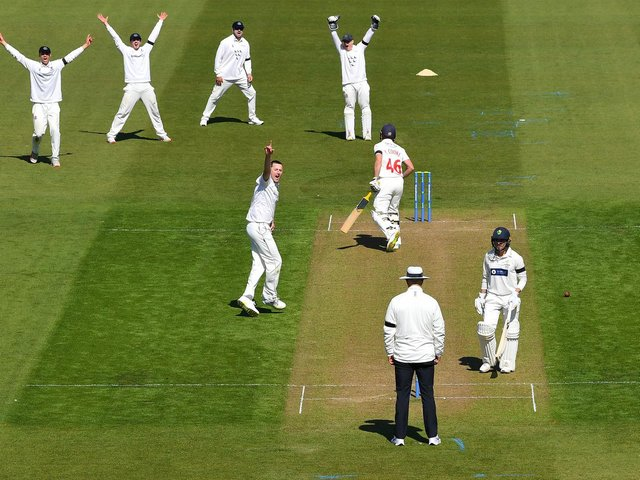 Ollie Robinson claims the wicket of Chris Cooke during the win over Glamorgan - one of his 13 in the match / Picture: Getty