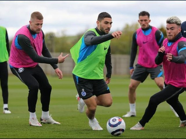 Brighton players in training ahead of Wolves this Saturday