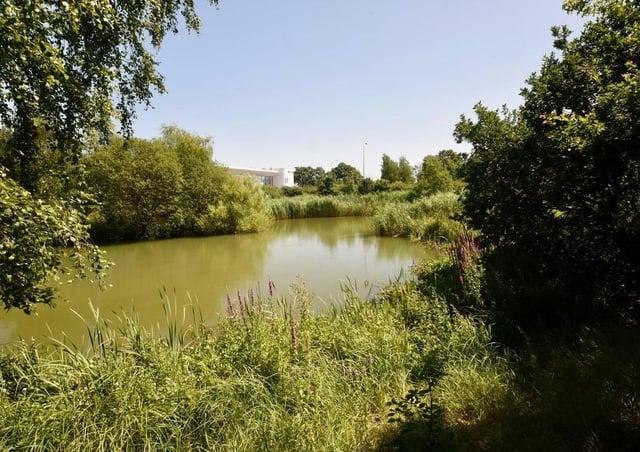 Hailsham Country Park has locked its gates SUS-210705-113436001