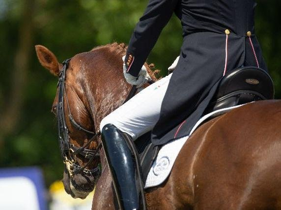Entries are in for the I.C.E. Horseboxes All England Dressage Festival at Hickstead / Picture: JulianPortch.com