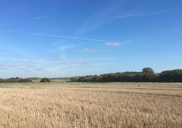The proposed land. Photo from Wealden District Council. SUS-210526-172310001