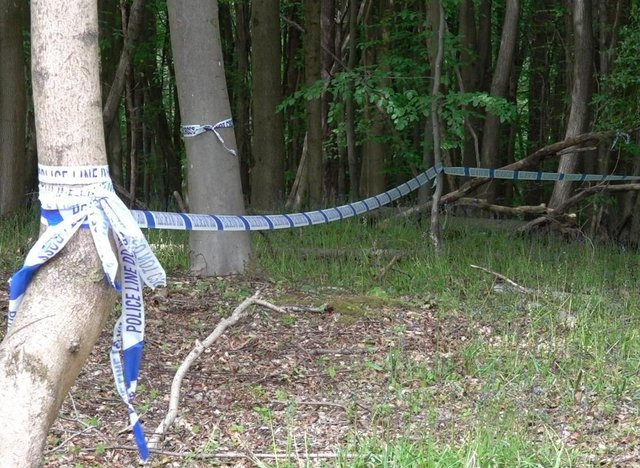 An area of the woods sectioned off by police. SUS-210206-141609001