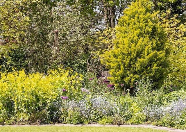 Bates Green Garden in Arlington is now open to the public SUS-210806-115227001