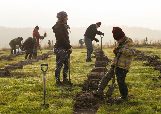 Tree planting bu Phil Formby SUS-211106-080211001