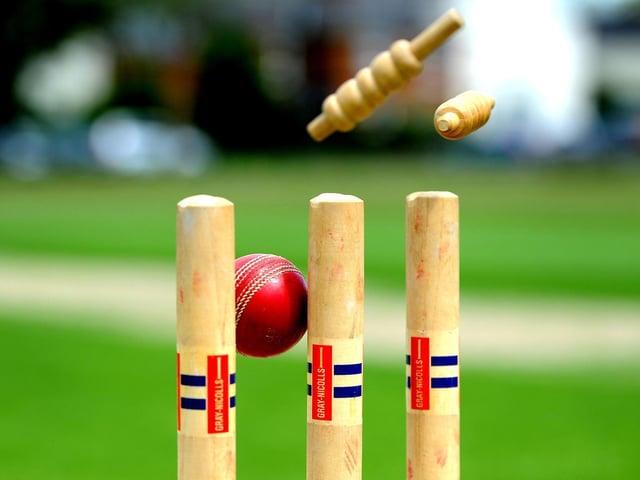 The Sussex Cricket League