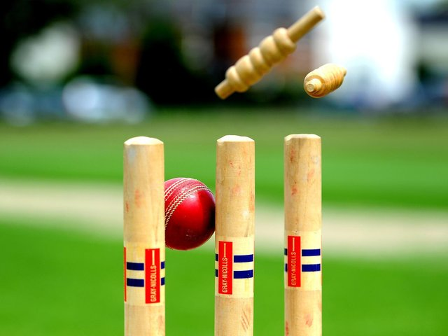 Sussex Cricket League's top performers