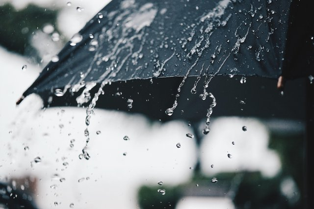 Us Brits are no stranger to the rain. Picture by Shutterstock