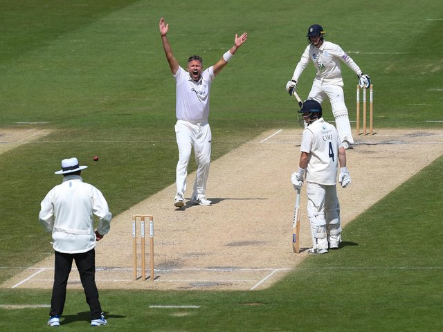 Mitch Claydon appeals in Sussex's Bob Willis Trophy clash with Hampshire last year / Picture: Getty